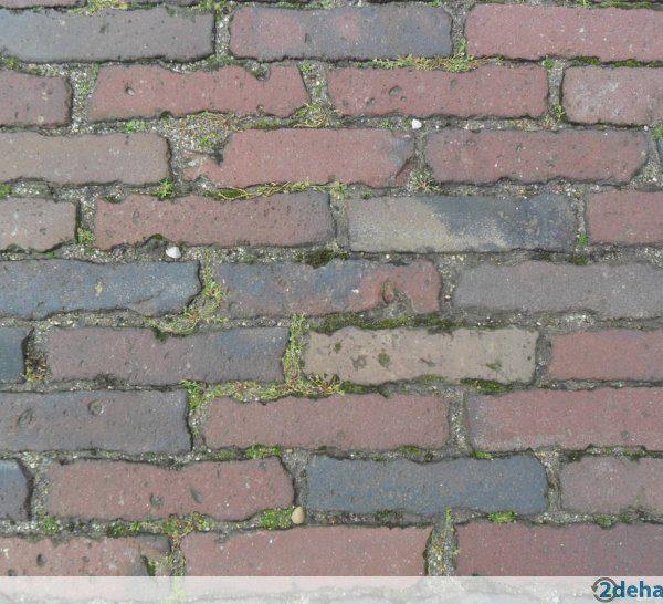257793702_3-hollandse-kleiklinkers-5-duimers